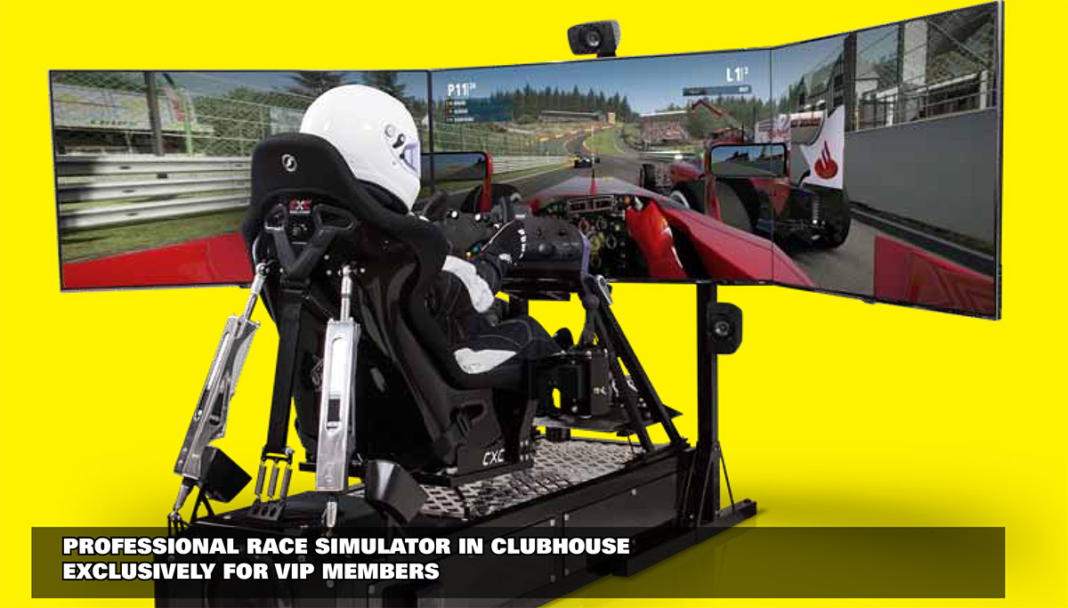 Professional Race Simulator