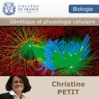 Génétique et physiologie cellulaire