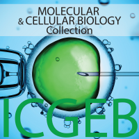 Molecular and Cellular Biology