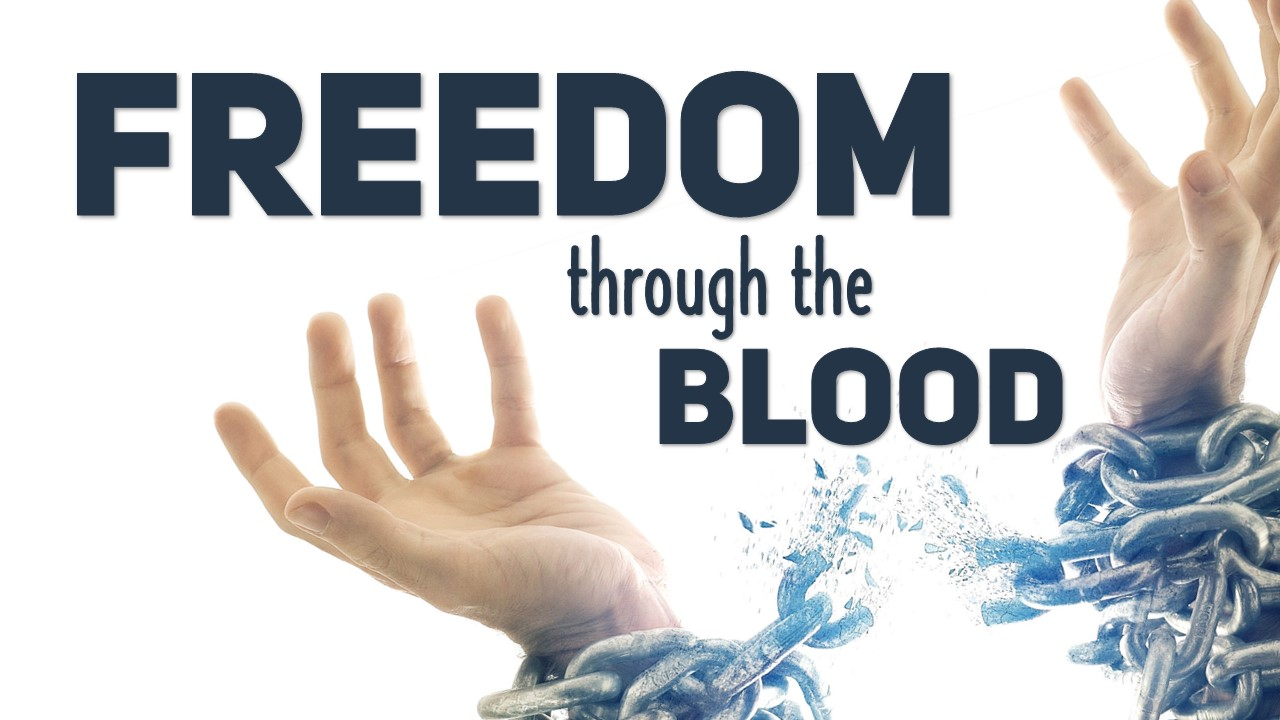 Freedom Through the Blood Image