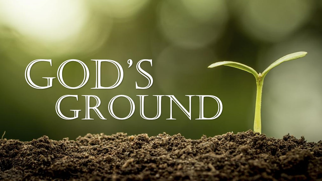 God\'s Ground Image