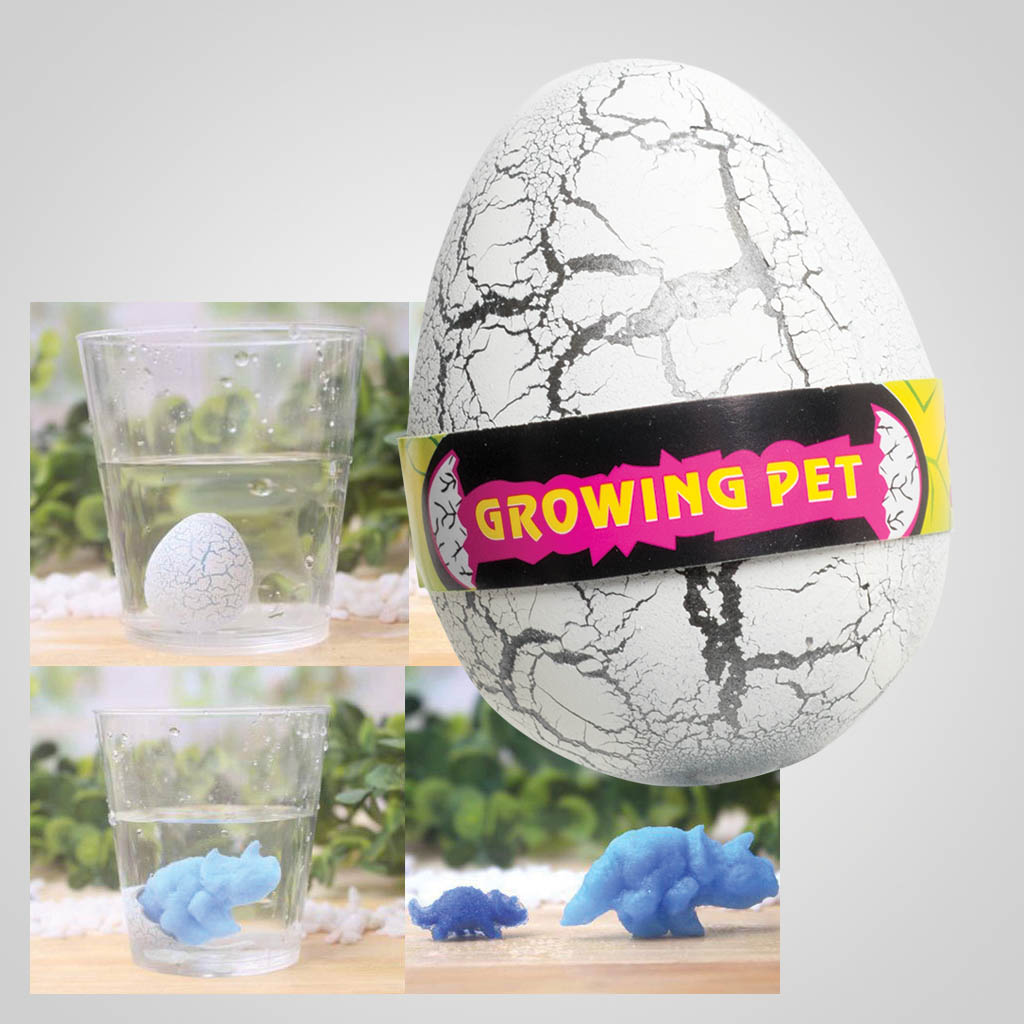 63413 - Grow A Dinosaur From an Egg