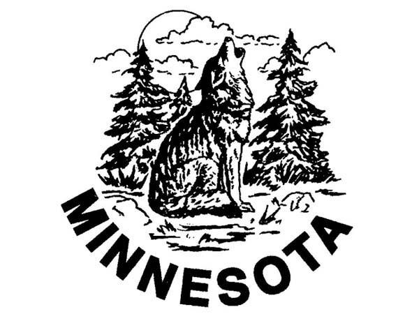 DD0100 - Howling Wolf Minnesota Drum Design