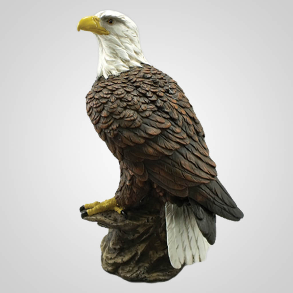 17853 - Large Perched Eagle