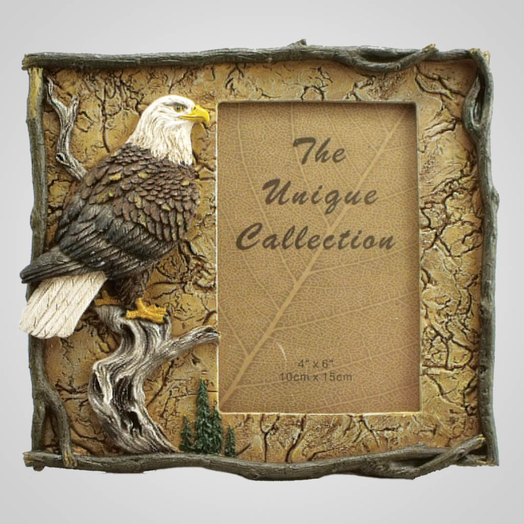 18979 - Eagle Photo Frame
