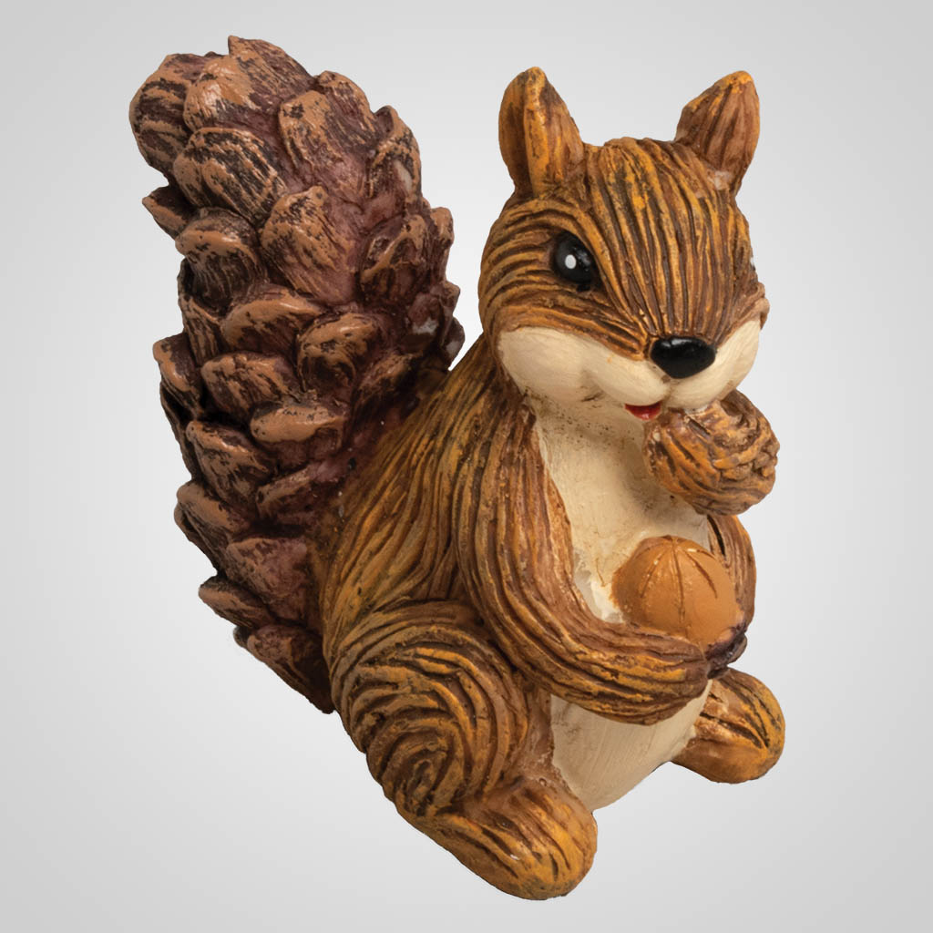 19621 - Pine Cone Tailed Squirrel