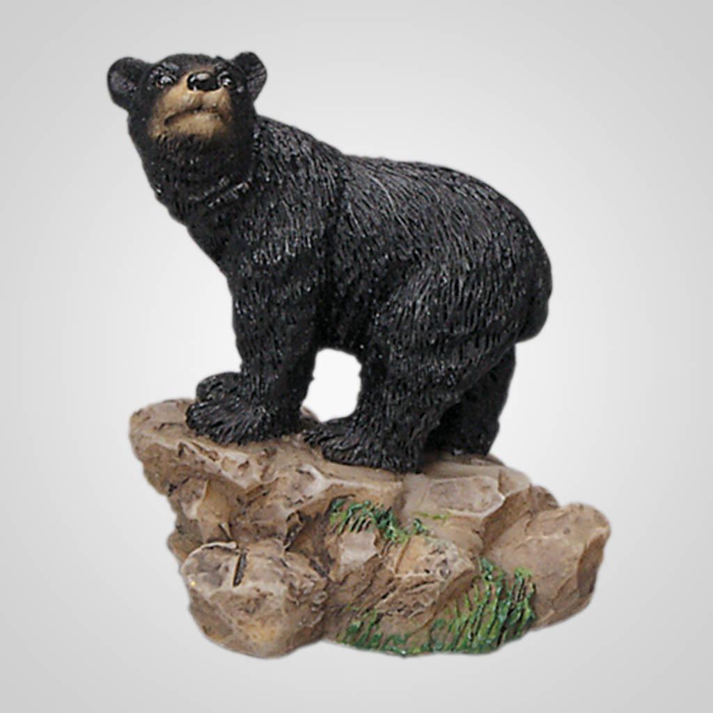 62058 - Black Bear On Rock