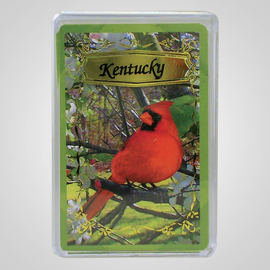 16567 - Cardinals Playing Cards, Name-Drop