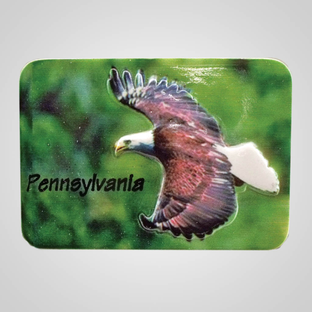 18877 - Poly Molded Eagle Magnet, Name-Drop