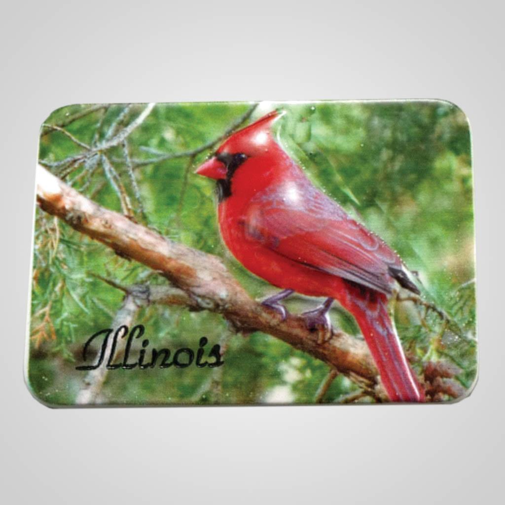 19013 - Poly Molded Cardinal Magnet, Name-Drop