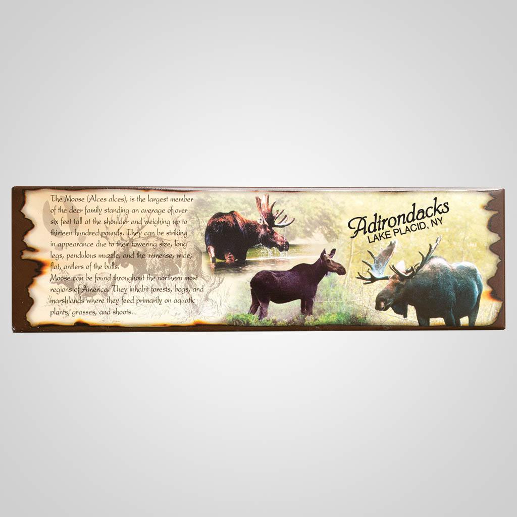 59245MT - Moose Tin Magnet, Montana