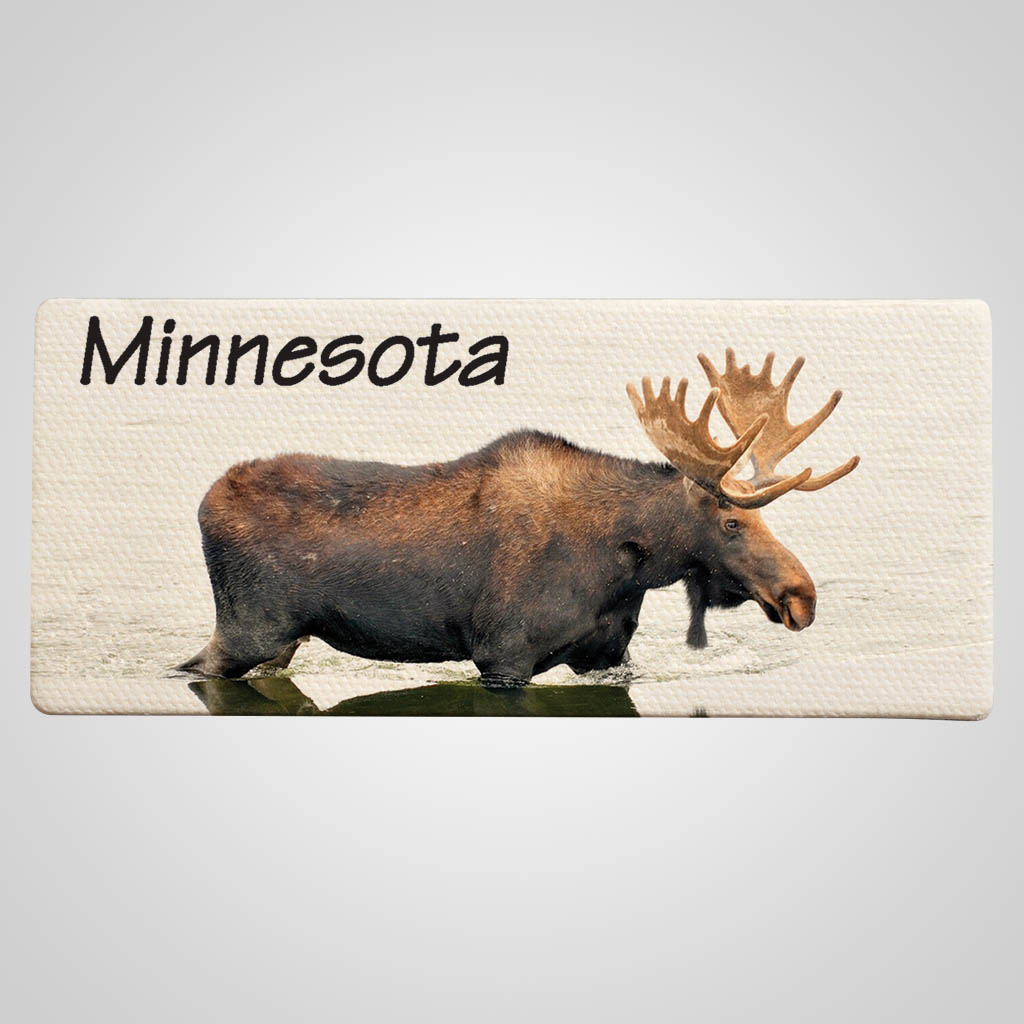 40029MOO - Canvas Magnet, Moose Design