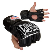 Combat Sports Fight Gloves