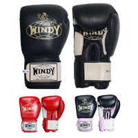 Windy Thai Sparring Gloves