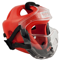 Top Ten Protective Mask