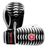 Top Ten Boxing Gloves - Ribs