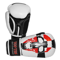Top Ten Boxing Gloves - Skull
