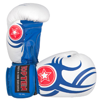 Top Ten Boxing Gloves - Tribal