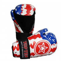 Top Ten Point Fighter Gloves - Country
