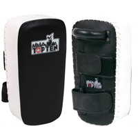 Top Ten MMA Kicking Shield