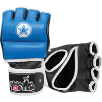 Top Ten MMA Training Gloves