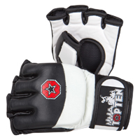 Top Ten MMA Free Fight Evo Flexx Gloves