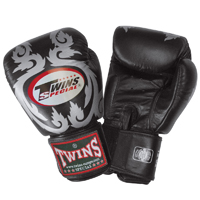 Twins Boxing Gloves Flourish