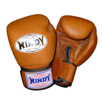 Windy Retro Boxing Gloves