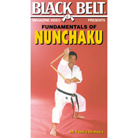 Fundamentals of Nunchaku