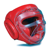 GTMA Leather Headgear w/ Clear Cage