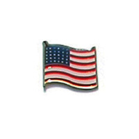 USA Wave Pin