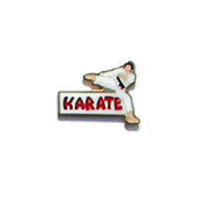 Karate Kick Pin