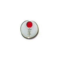 Karate (White) Pin