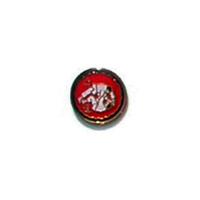 Judo Grapple Pin