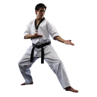 Macho 8.5oz Taekwondo Classic V-Neck Uniform