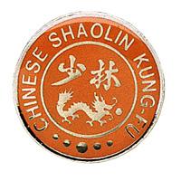 Chinese Shaolin Kung Fu Pin