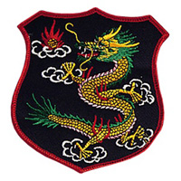 Dragon Shield Patch - 4