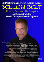 American Kenpo Karate - Yellow Belt Instructional