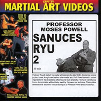 Sanuces Ryu 2