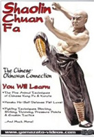 Shaolin Chuan Fa: The Chinese Okinawan Connection