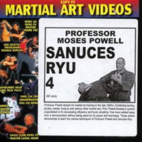Sanuces Ryu 4