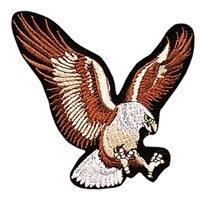 Eagle Patch - 4