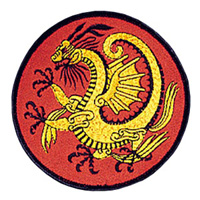 Gold Dragon Patch - 4