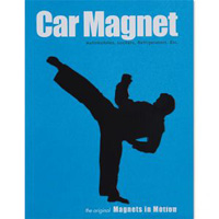 Martial Arts Magnet - Male Kicker