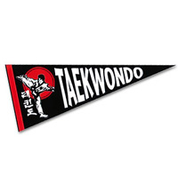 TaeKwonDo Pennant