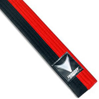 ProForce Thunder Poom Martial Arts Belts