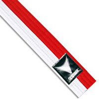 ProForce Thunder Renshi Martial Arts Belts