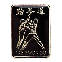 Tae Kwon Do Fighters Pin