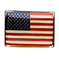 USA Flag Chrome Pin