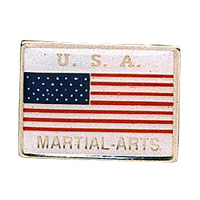 USA Martial Arts Pin